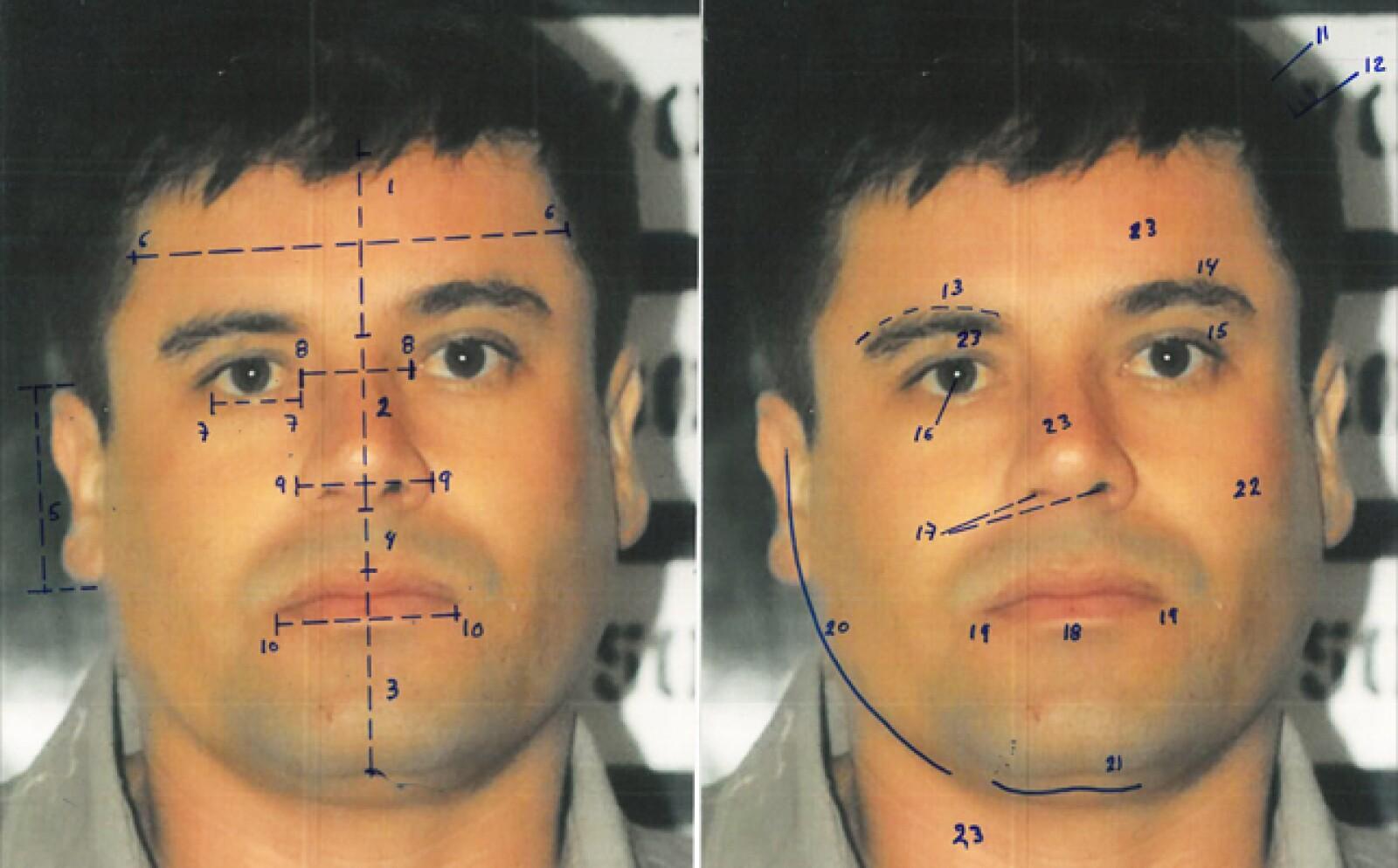 Los peritos también compararon los rasgos faciales de El Chapo a através de fotografías, y por medio de un método antropométrico comparativo de medidas, es decir,  midiendo los rasgos faciales  y comparándolos.