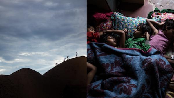 VerdeNopal: el proyecto de arte y diseño que explora problemas de México