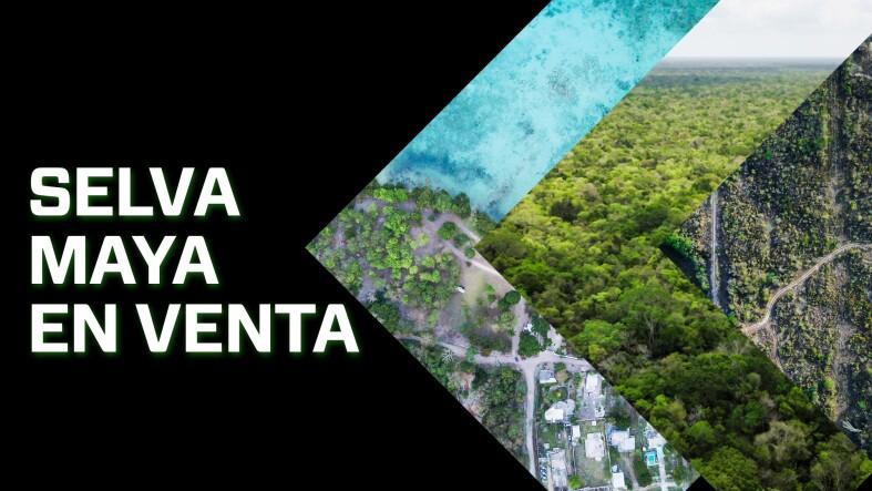 Selva Maya en VEnta.jpg