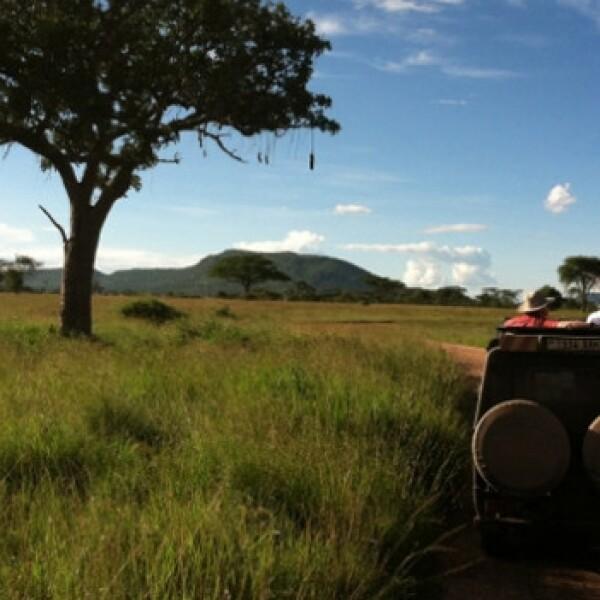 Tanzania: Take a ride on the wild side serengeti