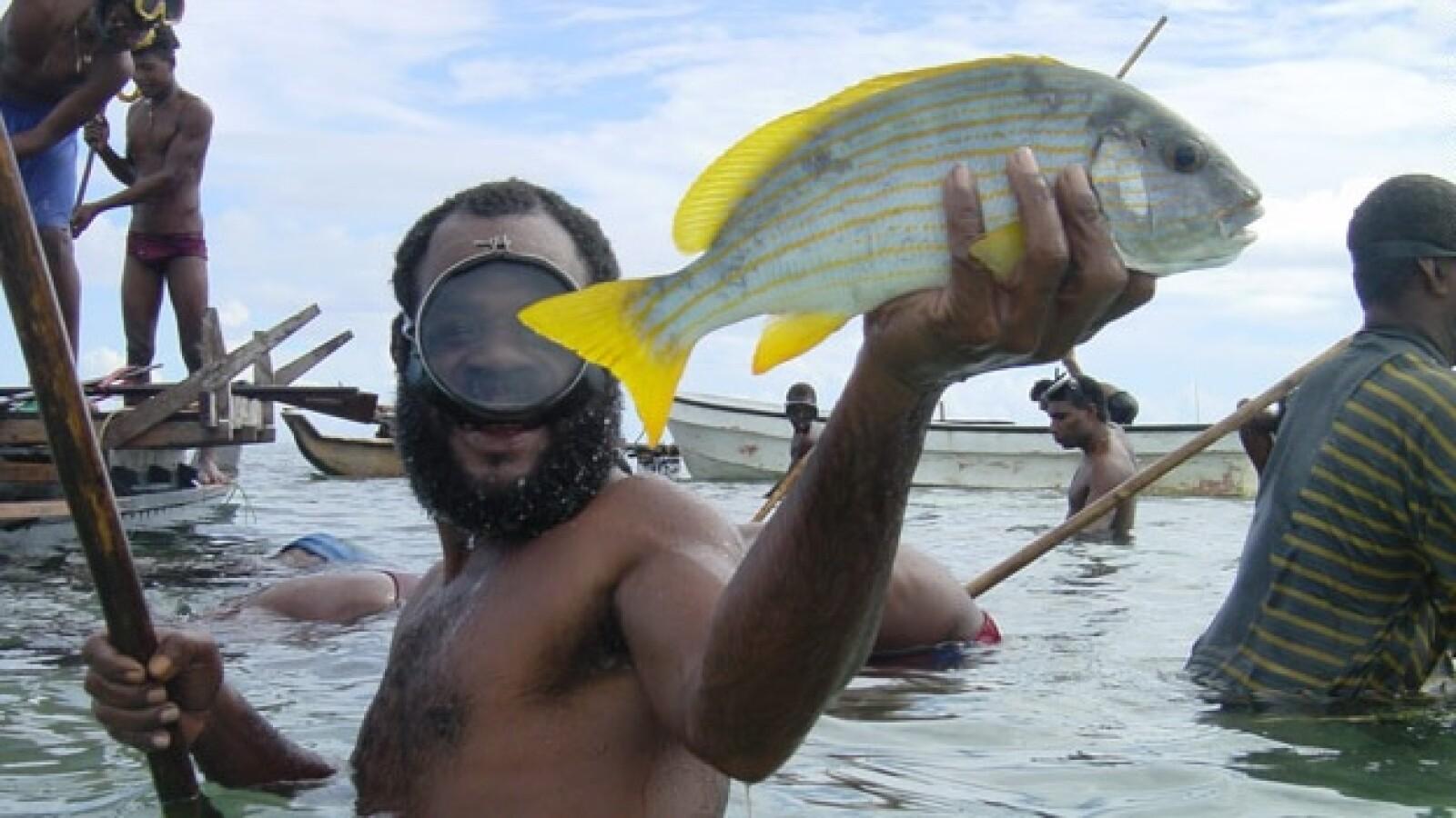 arrecife coral peces 06