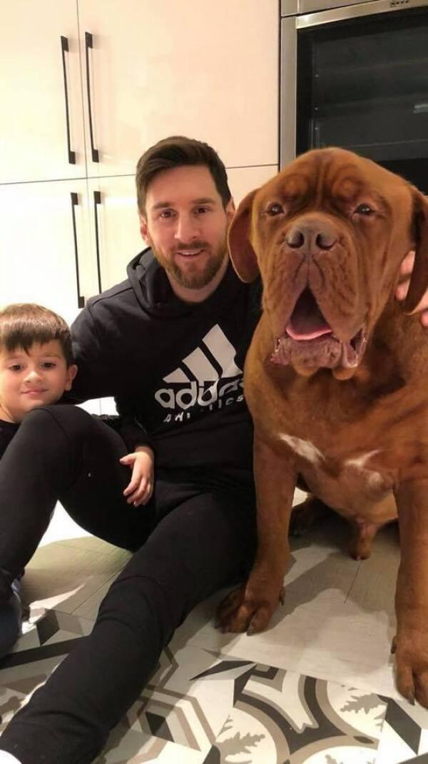 Hulk, el perro de Messi