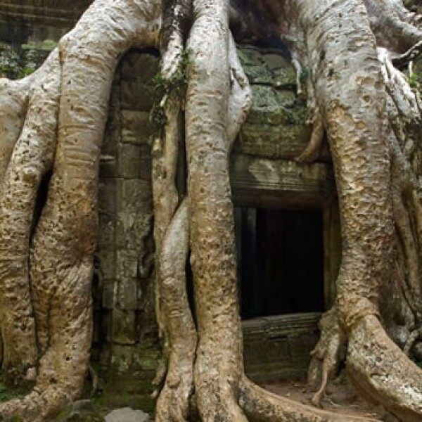 Camboya - Angkor