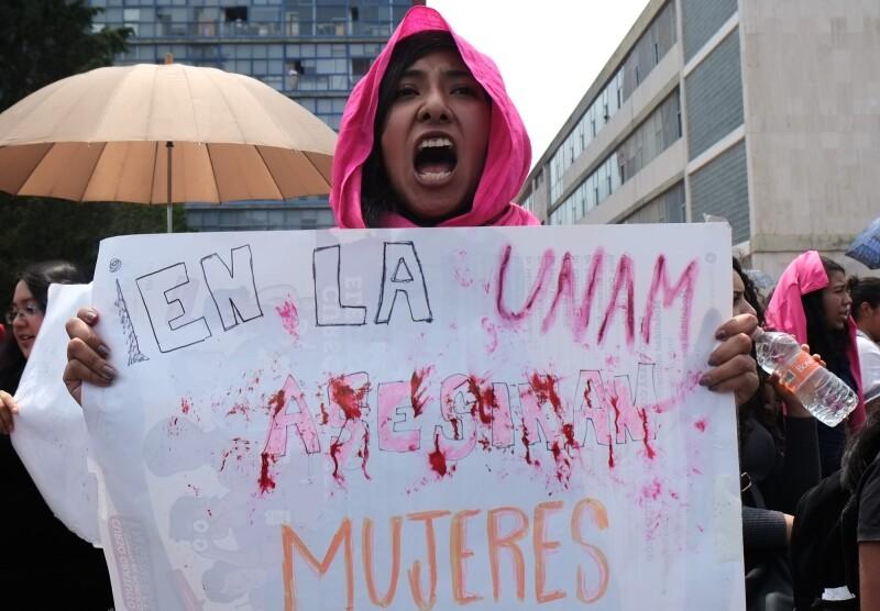 Protesta Lesvy