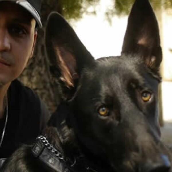 Amos y perros