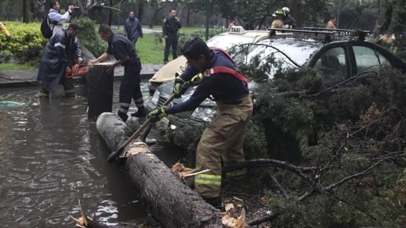 La fuerte lluvia y a las ráfagas de viento que azotó a la Ciudad de México, provocó la caída de árboles sobre automóviles en diversas zonas