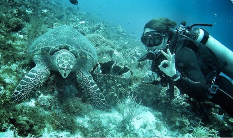 Hace dos semanas la pareja visitó Cozumel, donde practicaron buceo.