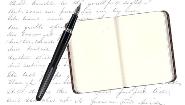 Escribe en un diario todas las noches.