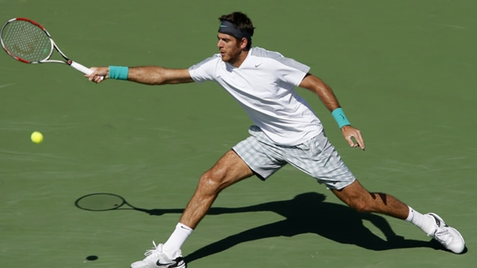 Del Potro final torneo Indian Wells