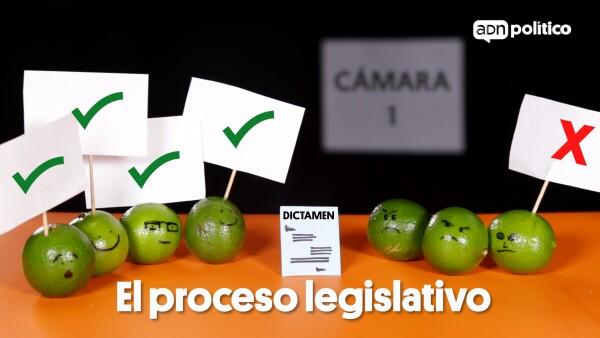 Proceso Legislativo Peras y Manzanas