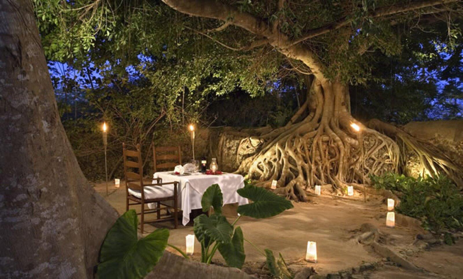 El resort cuenta con piscina al aire libre, en medio de la flora tropical, además de spa con cabaña al aire libre, así como una amplia diversidad de tratamientos corporales.