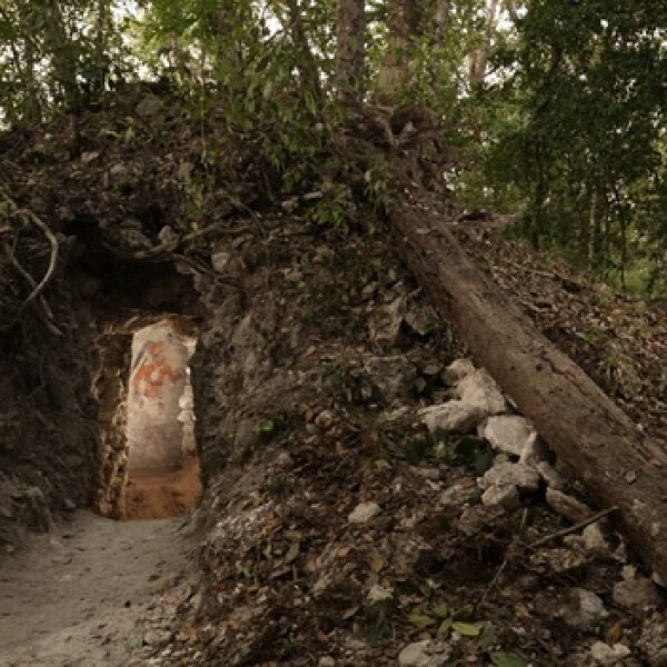 entrada al habitaculo donde esta el calendario maya mas antiguo