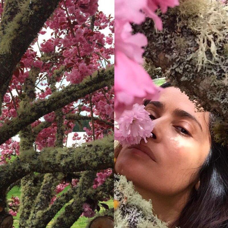 Su secreto de belleza radica en consejos de su abuela y el uso de plantas mexicanas.