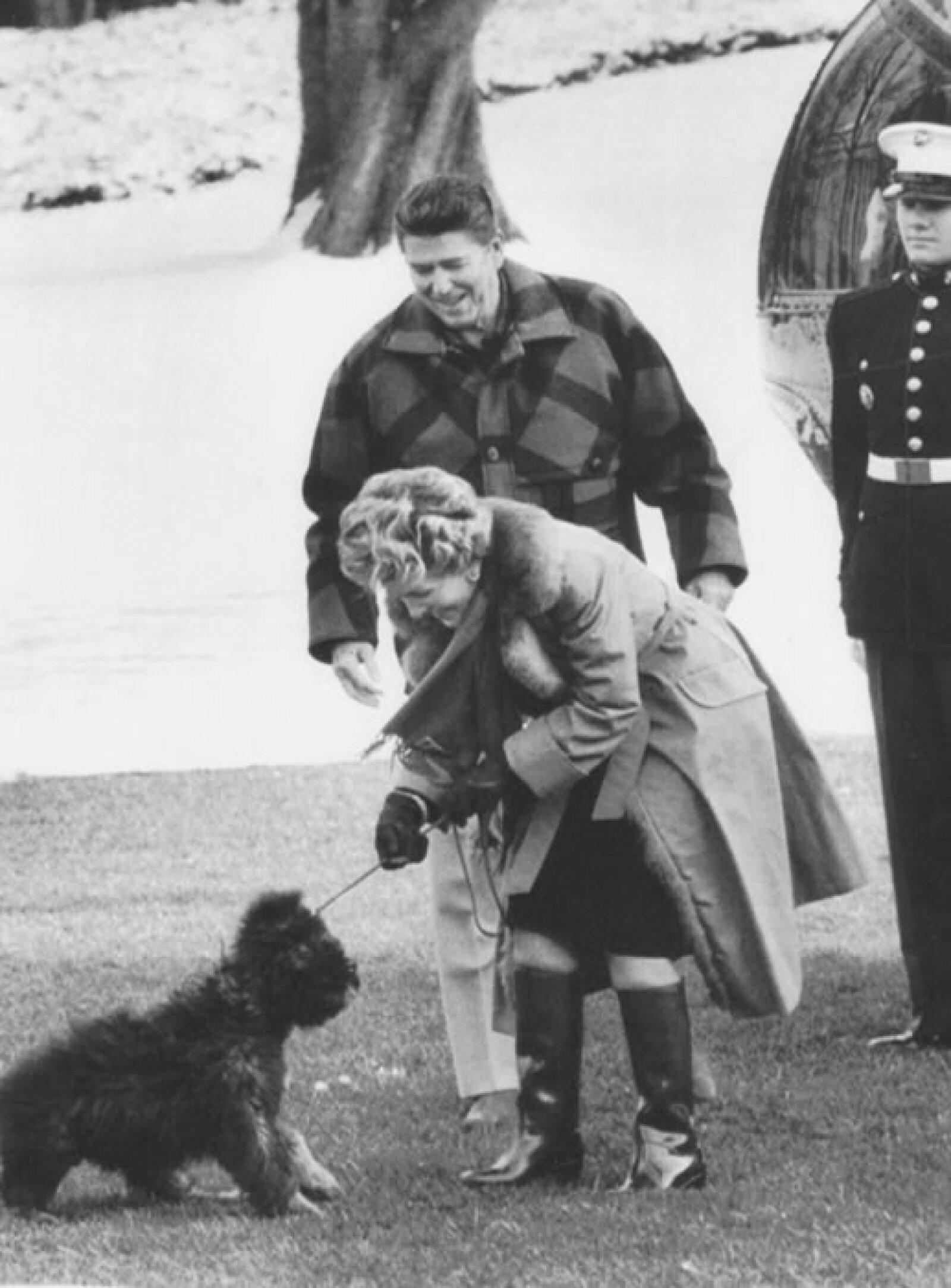 Ronald Reagan y su esposa Nancy se divierten con su perro Lucky.