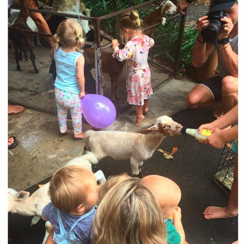 La actriz publicó una imagen en su Instagram en la que aparece con sus pequeños rodeados de animalitos, los cuales fueron llevados como parte de la fiesta.