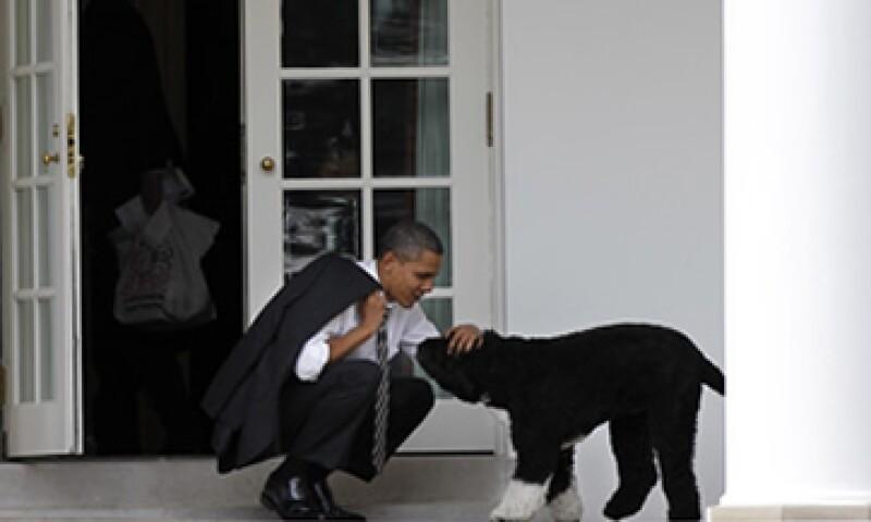 The Washington Post dedicó su primera plana a una fotografía del peludo canino. (Foto: AP)