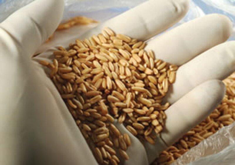 Los precios de los alimentos se ven afectados tanto por el alza en el crudo, como por las condiciones climáticas. (Foto: Photos to go)