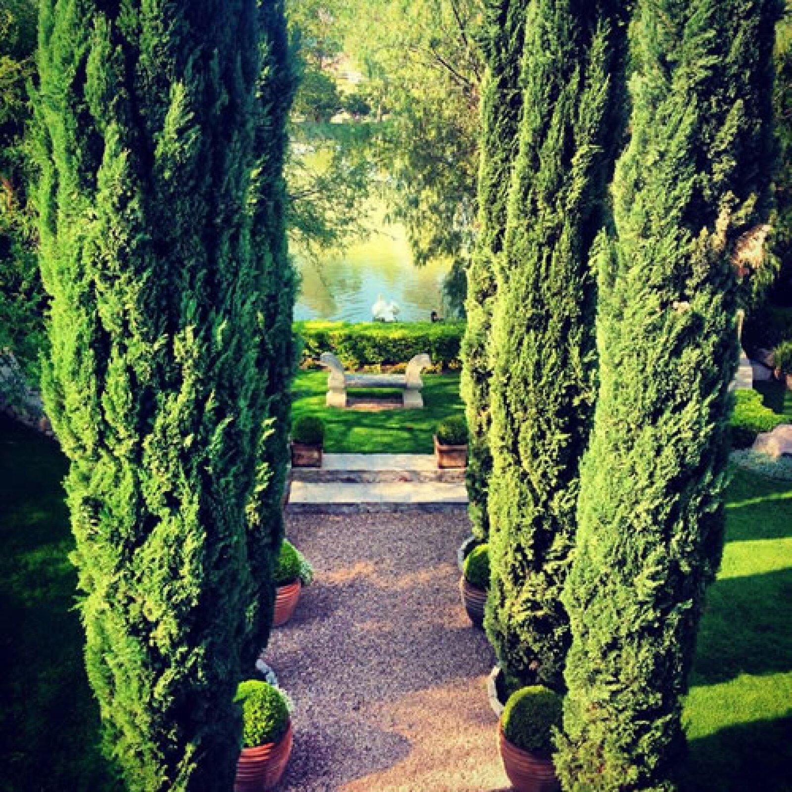 Shapi y Jorge se casarán en el rancho Los Olivos en las afueras de San Miguel de Allende, en un `French Country Estate´.