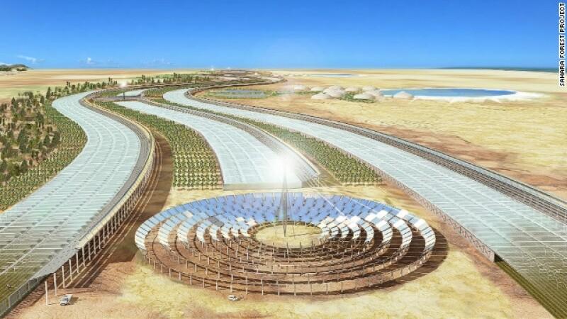 verde, desierto, qatar