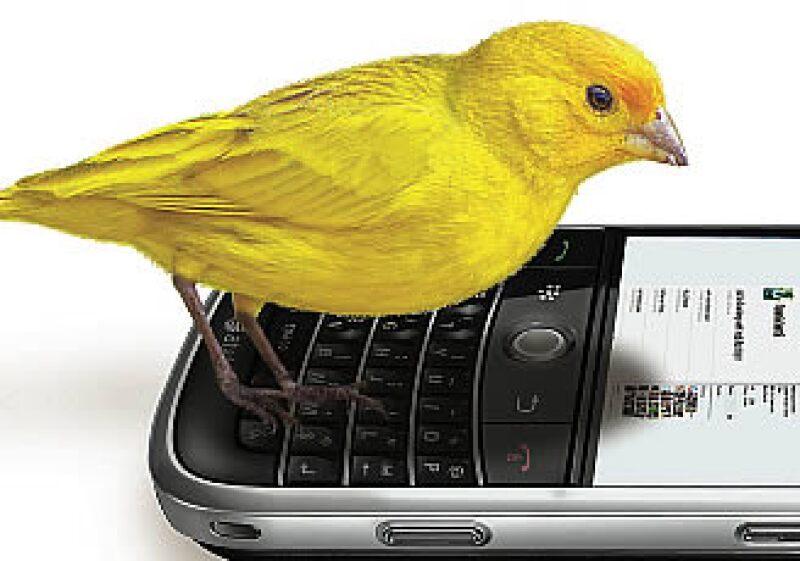 Twitter viene de tweet, que en inglés significa, literalmente, 'piar'. (Foto: Especial)