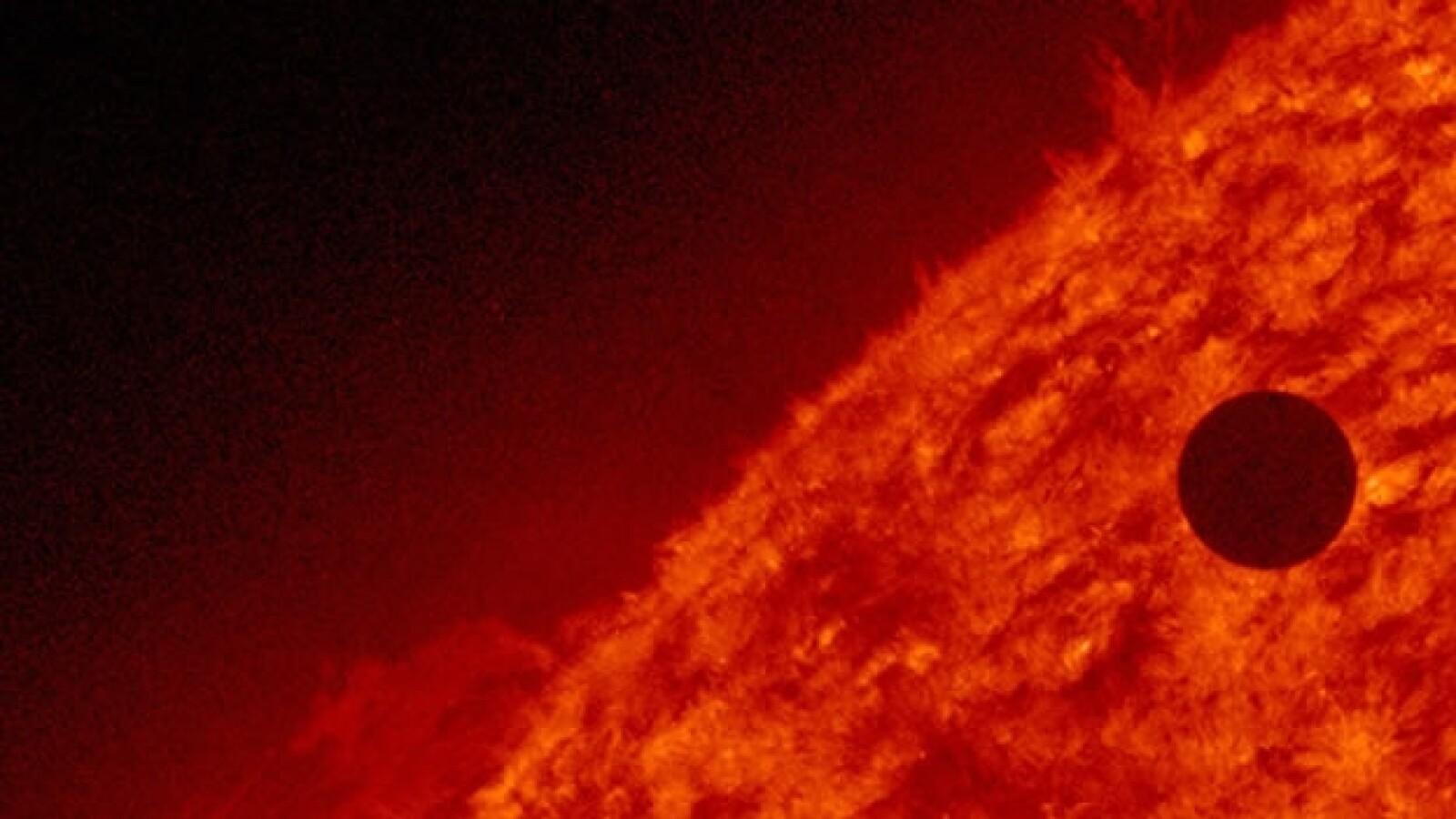 Venus transita ante el sol