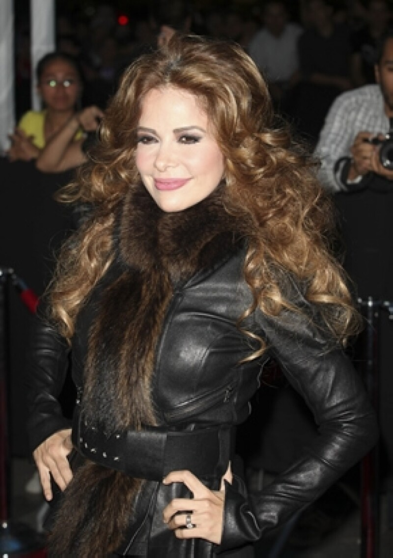 La cantante estuvo dos horas en custodia, una vez que se mandaron los documentos donde constataba que la cantante no tenía ninguna responsabilidad jurídica, la dejaron en libertad.