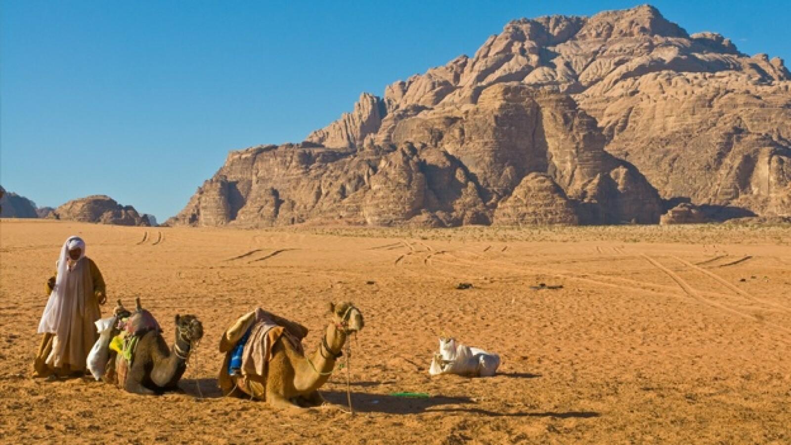 desierto, camello, jordania, unesco, patrimonio