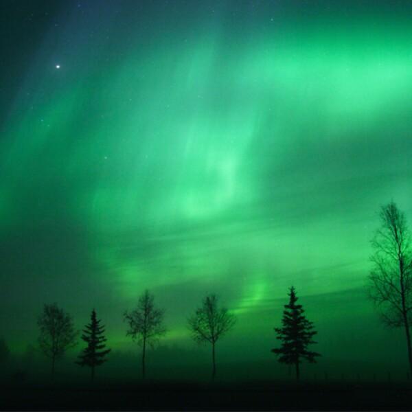 Fairbanks en Alaska es conocida como el mejor lugar para ver auroras boreales en Estados Unidos. Cuenta con aguas termales que harán de tu aventura una experiencia mucho menos fría y cansada. Hotel...
