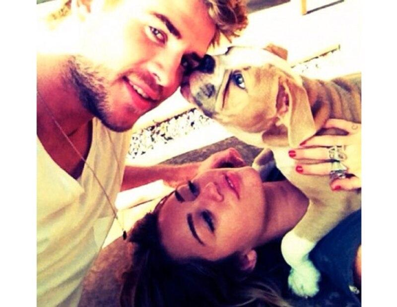 La cantante subió una foto a su cuenta de Twitter donde aparece con uno de sus tantos perros y su comprometido Liam Hemsworth.
