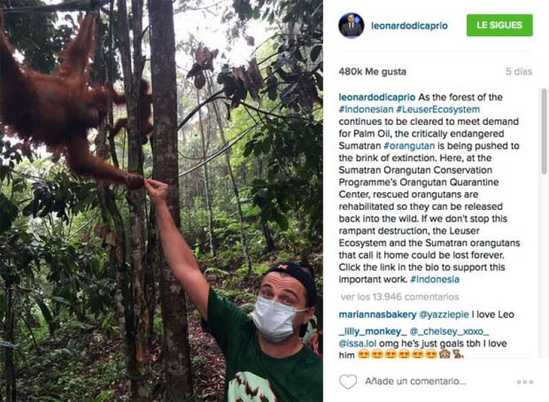 Las declaraciones y opiniones de Leo sobre la situación de la vida en Indonesia molestó al gobierno.