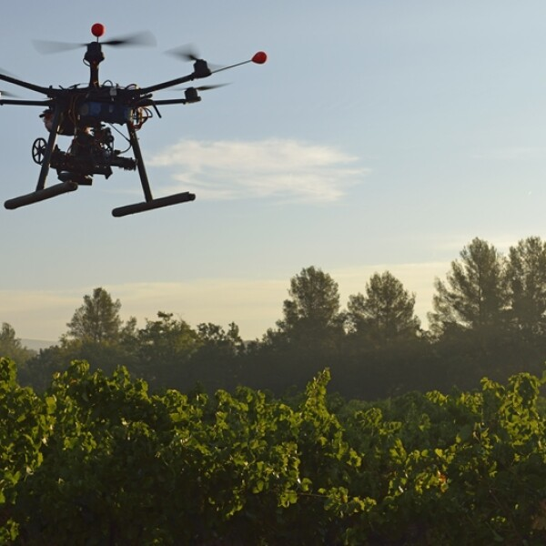 drone agricultura usos