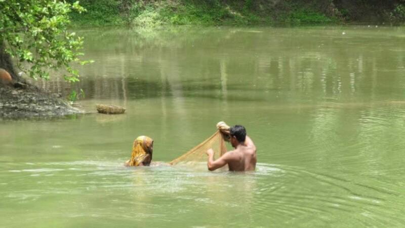 bangladesh camaron explotacion