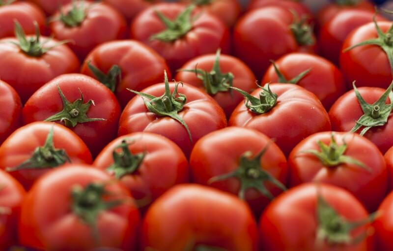 tomate mexicano Estados Unidos