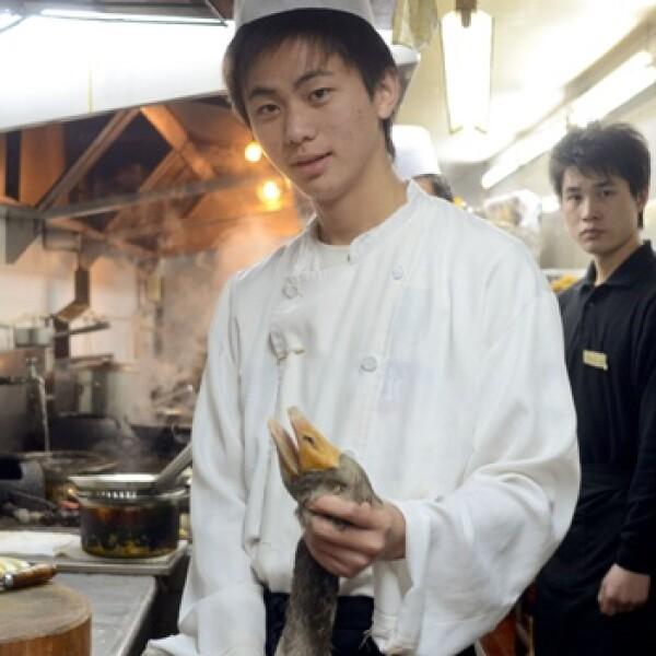 serpiente comida china galeria
