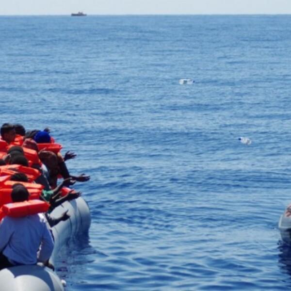 gale migrantes 8