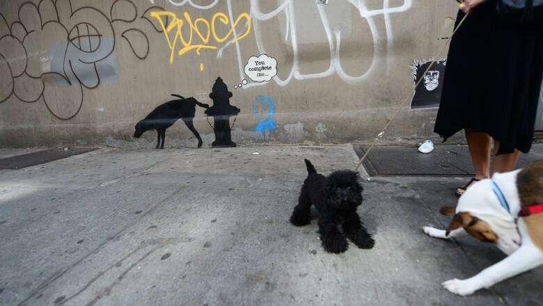 grafiti de banksy en nueva york