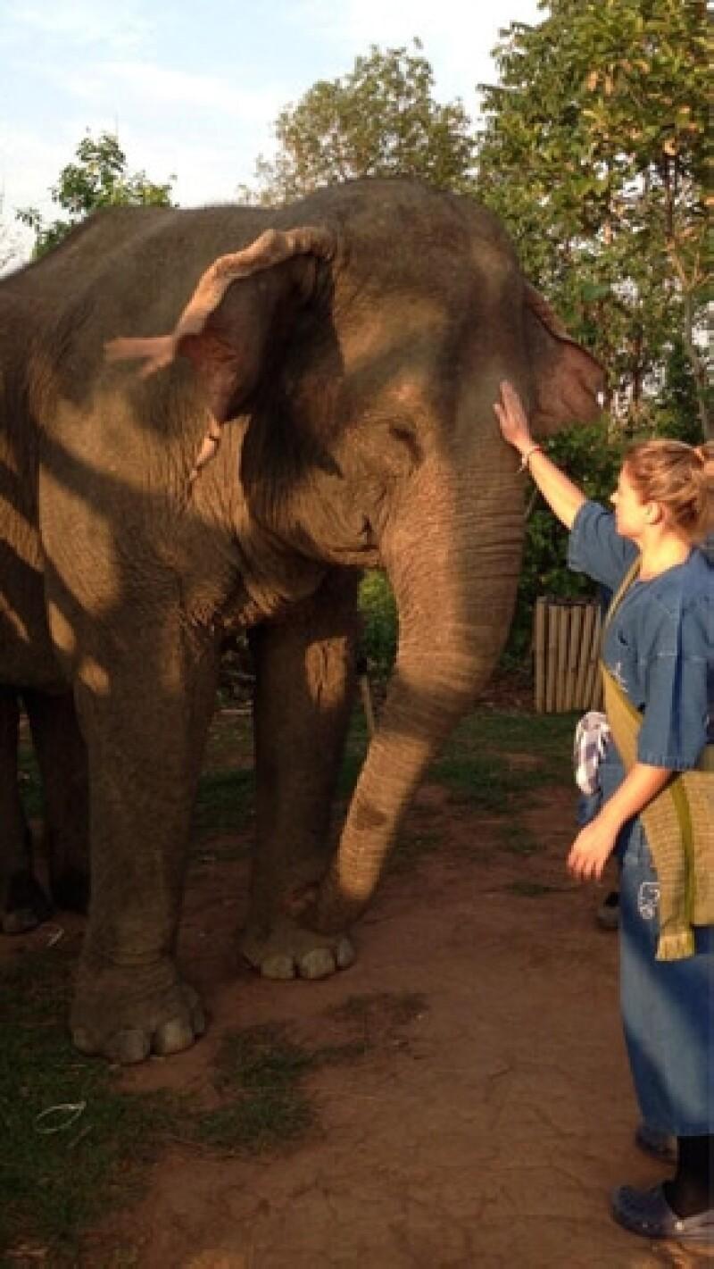 La actriz se mostró como toda una `Mahout´, persona que maneja y conoce un elefante.