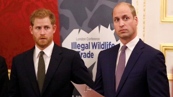 The Duke Of Cambridge Attends The 2018 Illegal Wildlife Trade Conference
