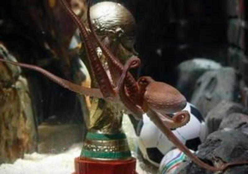 Paul recibió una réplica de la Copa del mundo como recompensa por sus predicciones de ocho partidos del torneo. (Foto: Reuters)