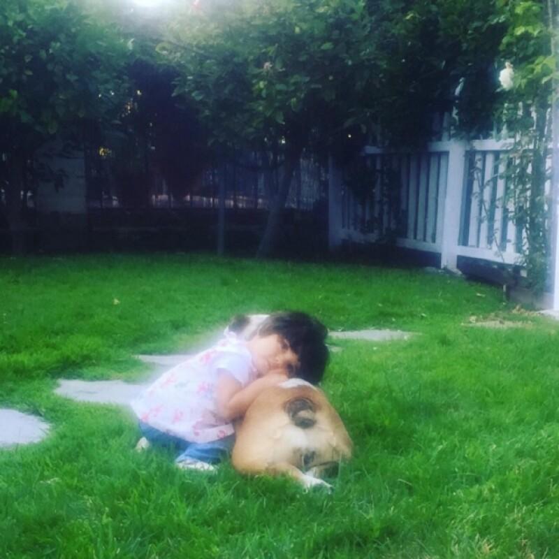 Si de amistad se trata, la hija de Eugenio Derbez sabe cómo representarlo de la forma más bella posible, pues su mascota se ha convertido en su compañera inseparable.