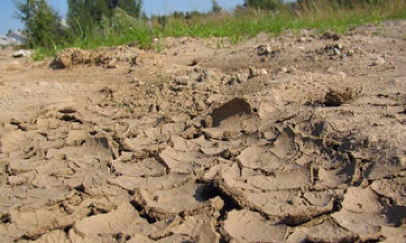 Las sequías e inundaciones tendrán impacto sobre el precio de los alimentos. (Foto: Photos To Go)