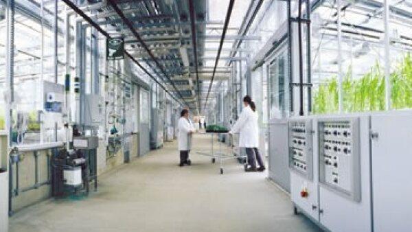 Syngenta ha trabajado con Goldman Sachs para evaluar la oferta de Monsanto. (Foto: www.syngenta.com.mx )