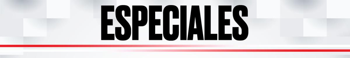 ESPECIALES / página especiales