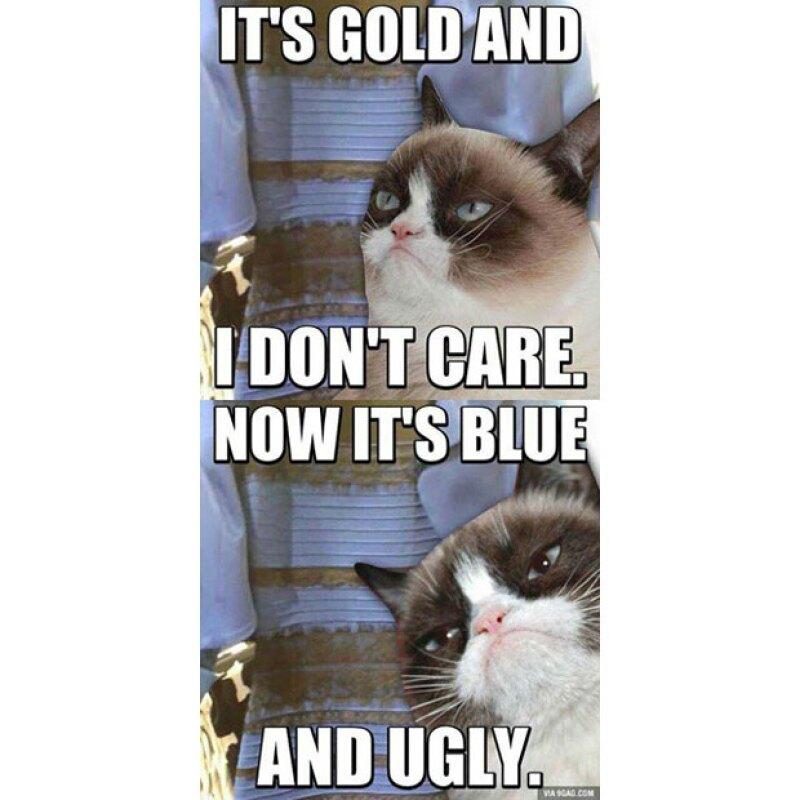 Grumpy Cat también dio su opinión sobre el vestido que en realidad es azul con negro.