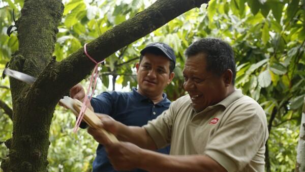 El programa de Nestlé ayudó a los agricultores a crecer la producción de cacao en el país.