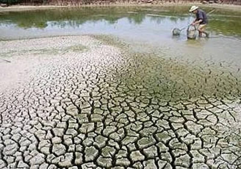 El golpe económico a la agricultura y a la alimentación por la sequía es uno de los riesgos del cambio climático. (Foto: Reuters)