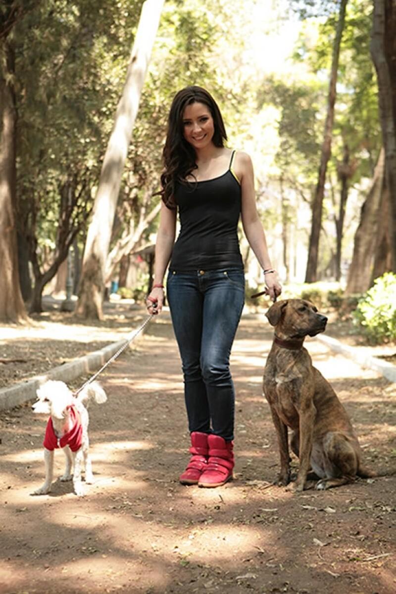 Ariadne Díaz desde pequeña ha rescatado perros de la calle y espera que más gente haga lo mismo.