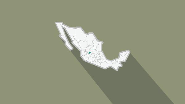 El dirigente del PAN en Aguascalientes afirmó que denunciará lo hechos ante la Fepade.
