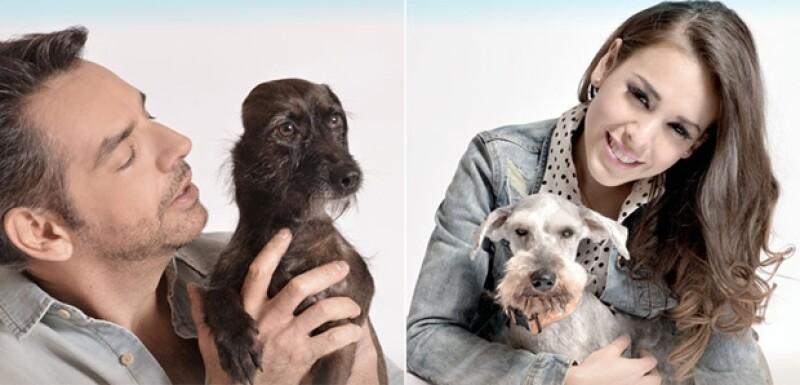"""""""Llévame a casa"""" es la campaña que celebridades como Danna Paola, Ludwika Paleta y Eugenio Derbez apoyan con el fin de crear conciencia para cuidar a los """"mejores amigos"""" del hombre."""