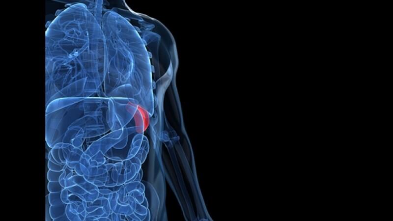 estomago radiografia cuerpo